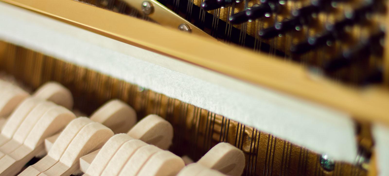 Inside a piano.